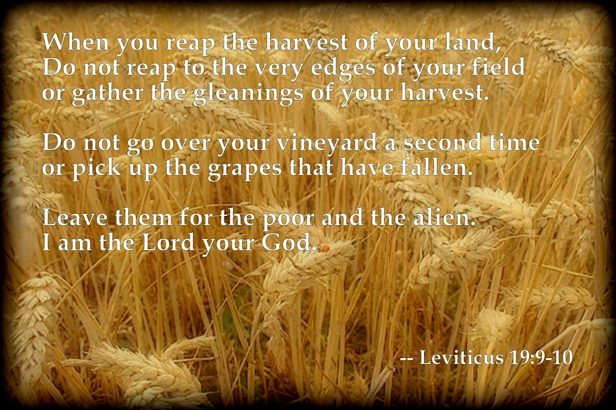 Leviticus chapter 19, verses 9 and 10